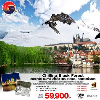 Chilling Black Forest ออสเตรีย ฮังการี สโลวัค  เชก เยอรมนี สวิตเซอร์แลนด์ 10 วัน 7 คืน โดยสายการบิน การบินไทย