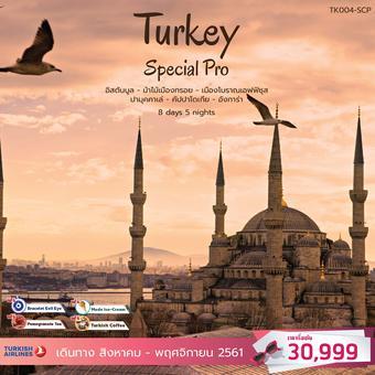 ทัวร์ตุรกี Special Pro Turkey 8วัน 5คืน