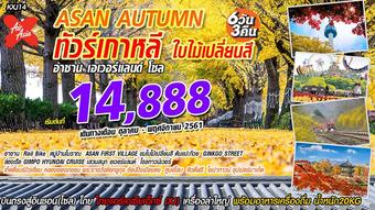 Asan Autumn ทัวร์เกาหลี อาซาน-เอเวอร์แลนด์-โซล 6D3N
