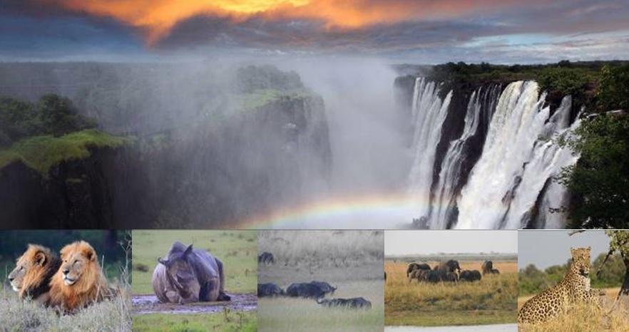 10 วัน ซิมบับเว แซมเบีย บอสวานา เคนย่า