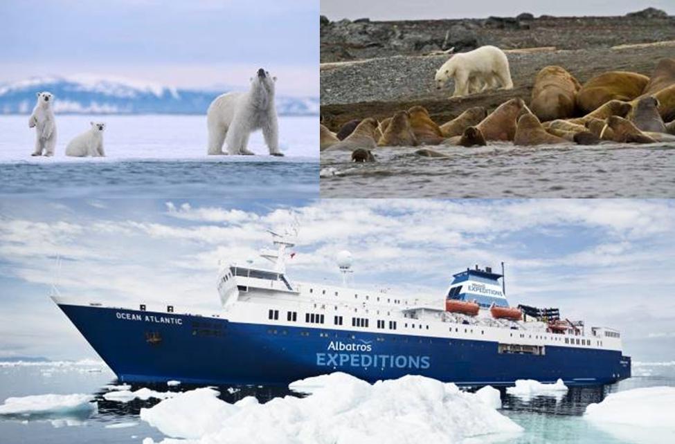 11 วัน สวาลบาร์ด ขั้วโลกเหนือ 80 องศา