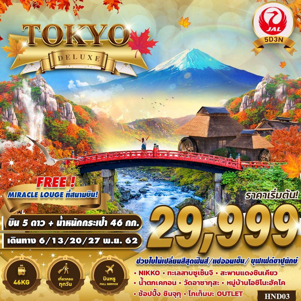 ทัวร์ญี่ปุ่น TOKYO DELUXE 5D3N