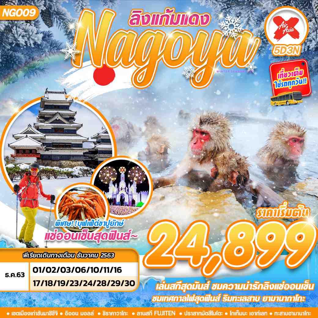 ทัวร์ญี่ปุ่น NAGOYA FUJI ลิงแก้มแดง 5D3N