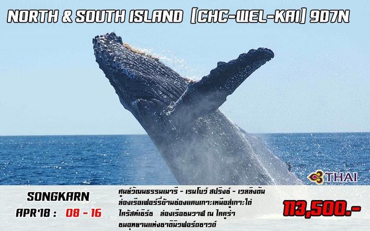 NORTH & SOUTH ISLAND [CHC-WEL-KAI] 9D 7N (SONGKRAN)