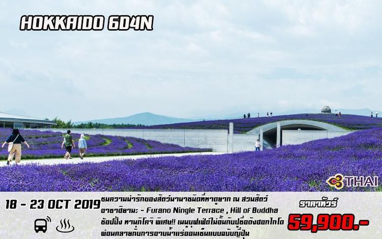 HOKKAIDO - FURANO - OTARU - SAPPORO 6D4N