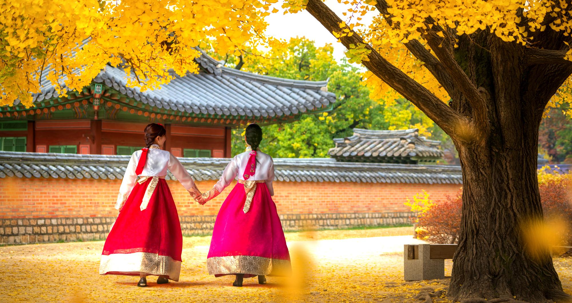 ทัวร์เกาหลี 2020