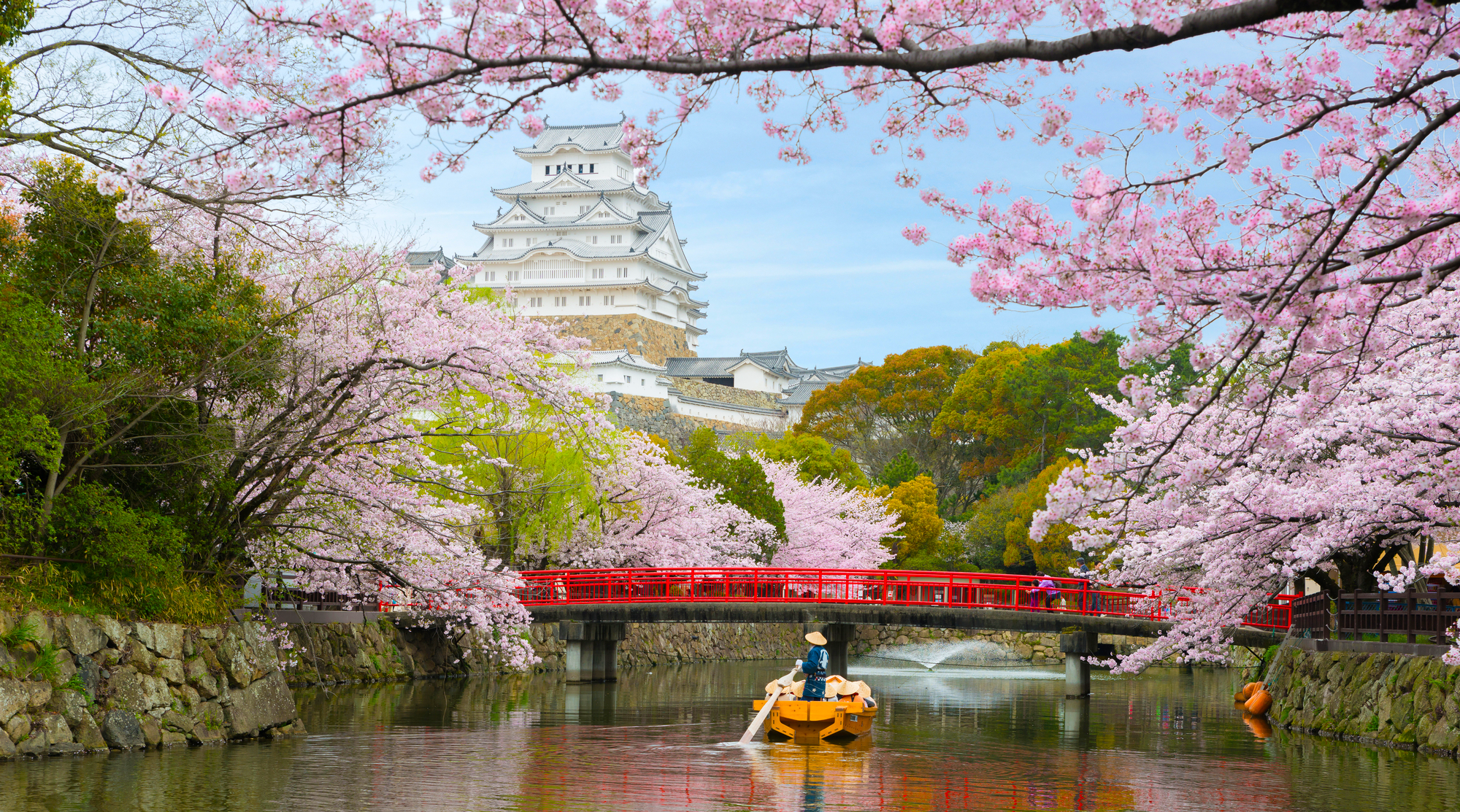 ทัวร์ญี่ปุ่น โอซาก้า ซากุระ 2020