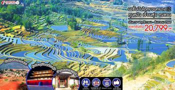 นาขั้นบันไดหยวนหยาง คุนหมิง เจี้ยนสุ่ย ตงชวน 6 วัน 5 คืน (MU)