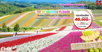 ทััวร์ญี่ปุ่น TOP OF HOKKAIDO FLOWER 6D4N (XJ)