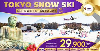 ทัวร์ญี่ปุ่น TOKYO SNOW SKI 5D3N (TG)