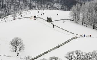 KOREA SKI WINTER สกีรีสอร์ท - โซล – โซล