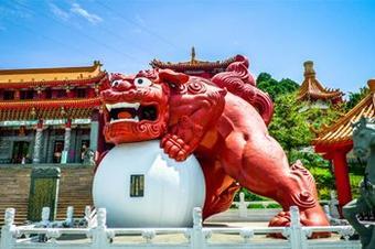 T-DED ดี๊ดี!! TAIWAN