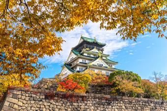 """""""JAPAN OSAKA รักหมดใจ ใบไม้หลากสี"""""""