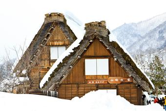 MAVEL OF SNOW MONKEY NAGOYA TAKAYAMA
