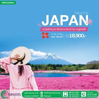 Pinkmoss Festival Tokyo Fuji