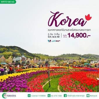 ทัวร์เกาหลี BLOOM BLOOM