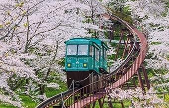 ทัวร์ญี่ปุ่น HOKKAIDO