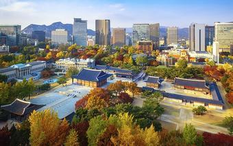 ทัวร์เกาหลี พาจู โซล โอ้โหใบไม้หลากสี
