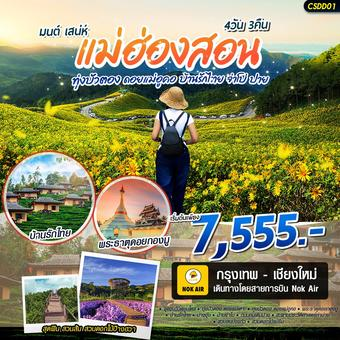มนต์ เสน่ห์ แม่ฮ่องสอน ทุ่งบัวตอง ดอยแม่อูคอ บ้านรักไทย 4วัน 3คืน