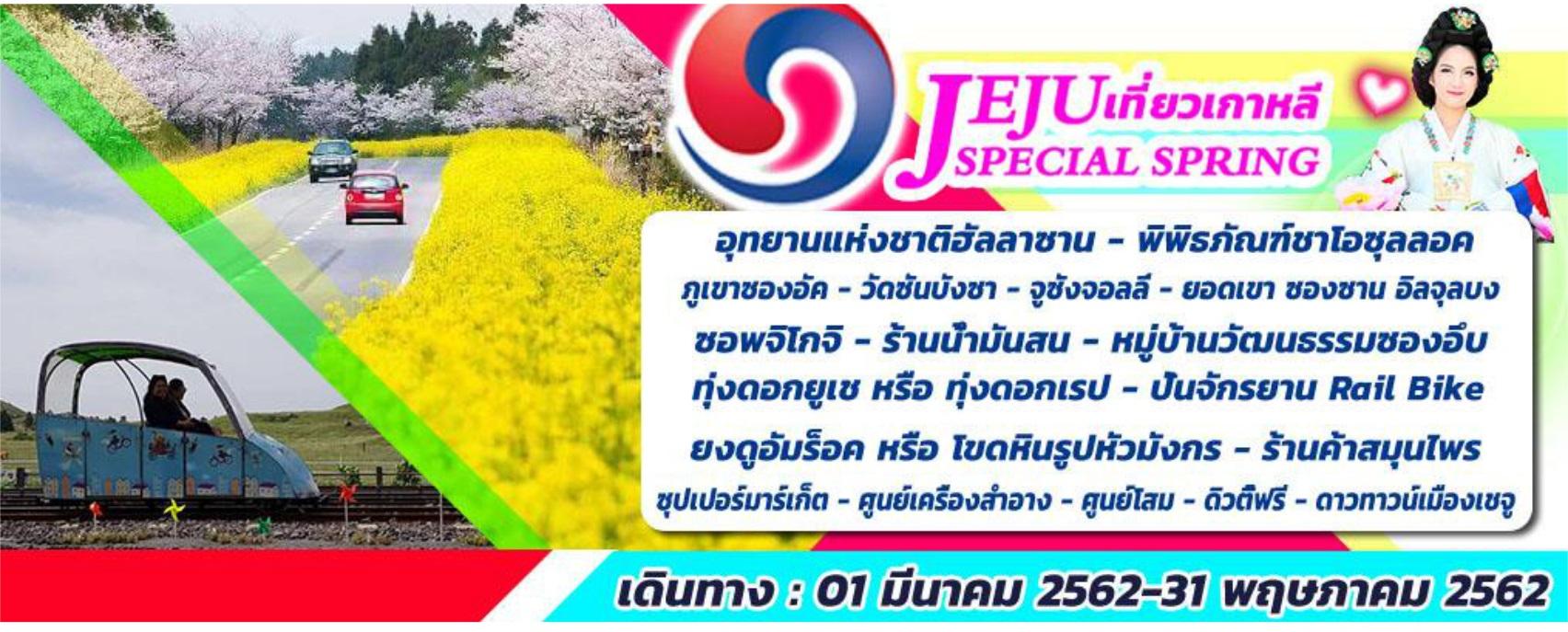 JEJU SPECIAL SPRING 4D2N ทัวร์เกาหลี เกาะเชจู