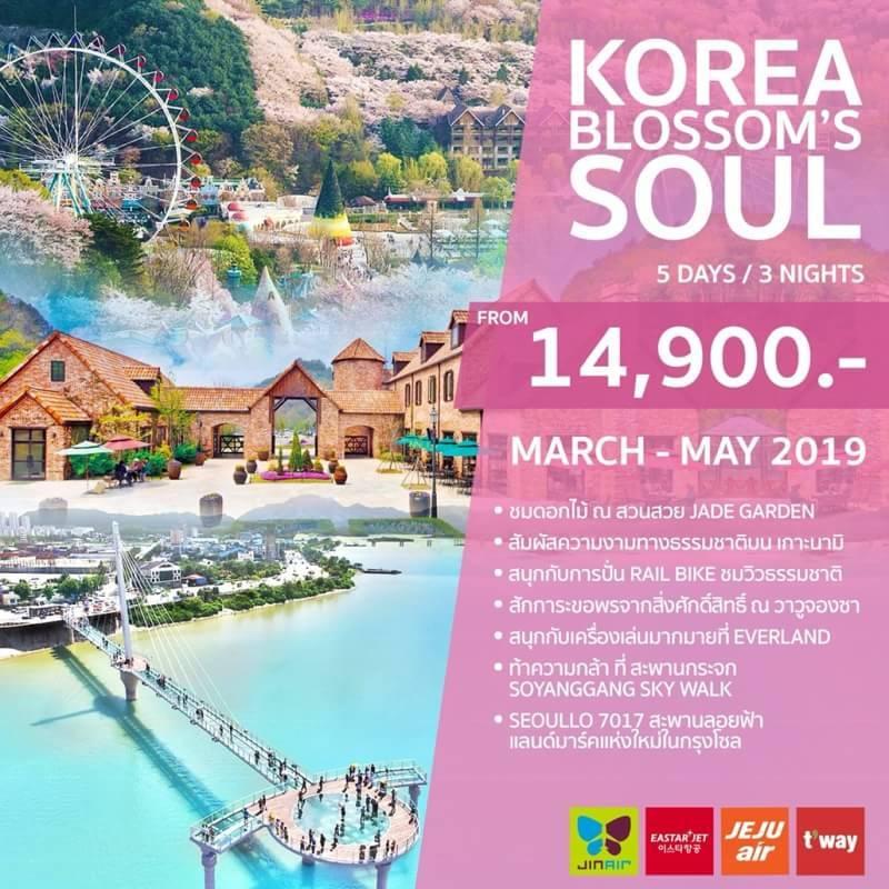ทัวร์เกาหลี  Blossom's Soul 5วัน 3คืน