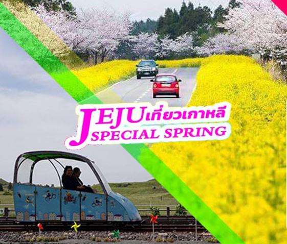 ทัวร์เชจู JEJU SPECIAL SPRING 4วัน 2คืน