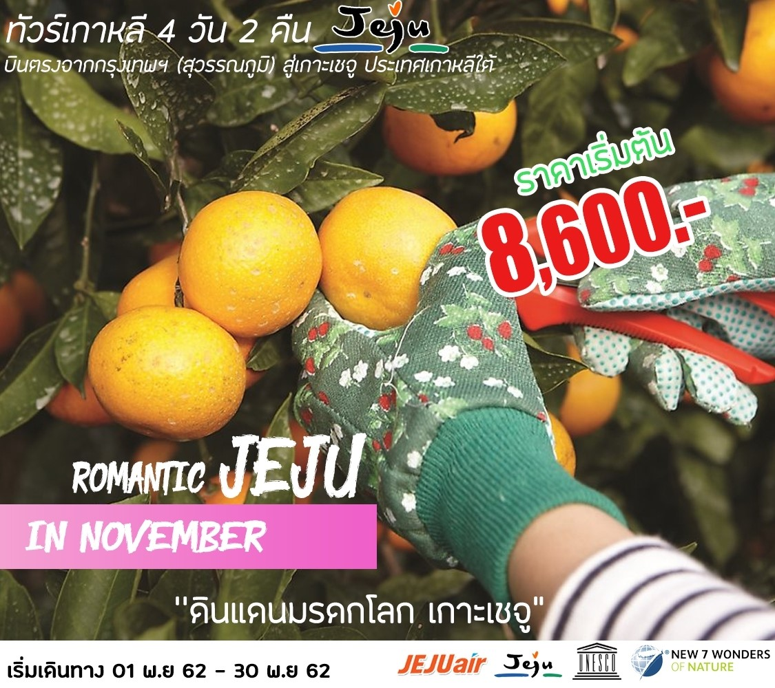 ทัวร์เชจู ROMANTIC JEJU IN NOVEMBER 4D2N