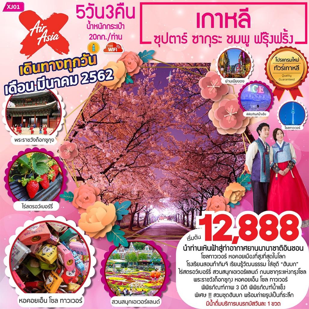 ทัวร์เกาหลี สวนสนุกเอเวอร์แลนด์ 5 วัน 3 คืน ซุปตาร์... ซากุระ ชมพู ฟรุ๊งฟริ้ง
