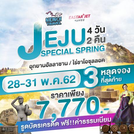 ทัวร์เกาหลี เชจู JEJU SPECIAL SPRING 4 วัน 2 คืน ZE (TRWT)