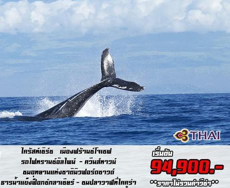 ทัวร์นิวซีแลนด์ SOUTH ISLAND MFM+FOX+KAI 8 วัน 6 คืน TG ( GLHM )