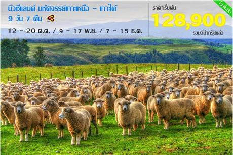 ทัวร์นิวซีแลนด์ เกาะเหนือ-เกาะใต้ WONDERFUL NEW ZEALAND 9 วัน 7 คืน TG ( NEWC )