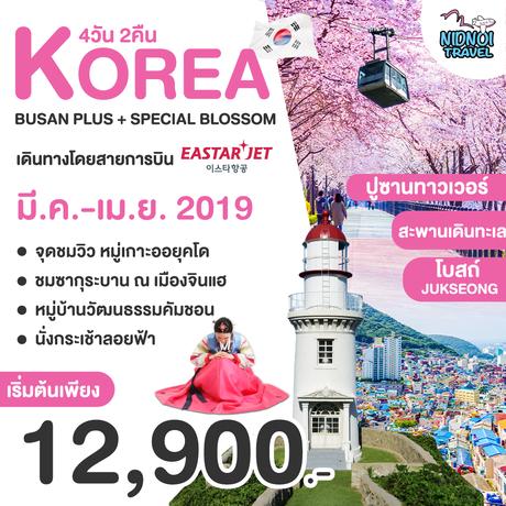 ทัวร์เกาหลี BUSAN PLUS + SPECIAL BLOSSOM 4 วัน 2 คืน ( TRWT )