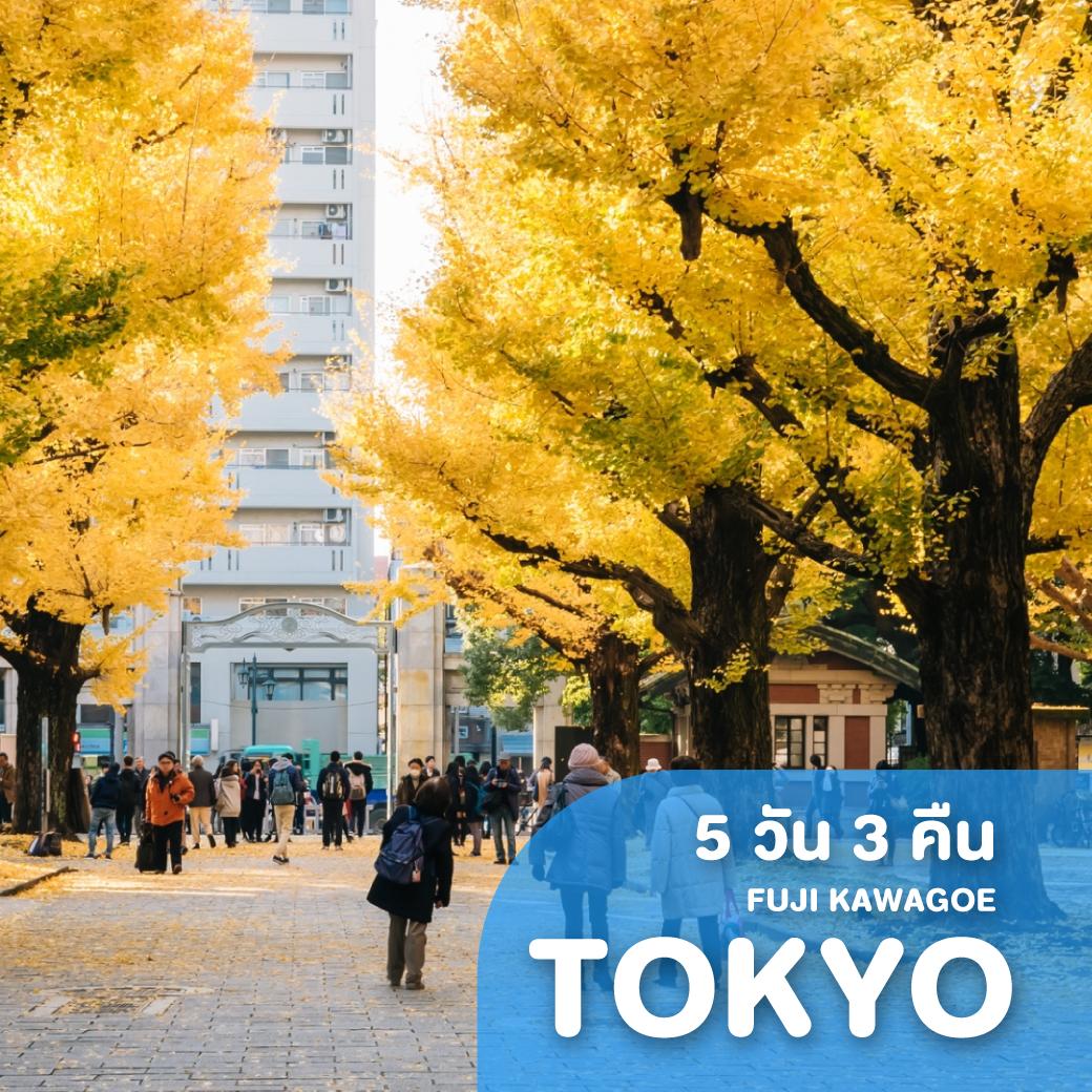 ทัวร์ญี่ปุ่น TOKYO FUJI KAWAGOE ซุปตาร์ อุโมงค์เมเปิ้ล 5 วัน 3 คืน XJ ( TTNT )