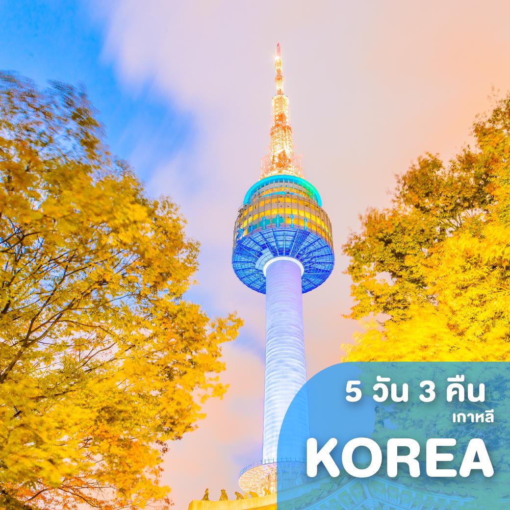 ทัวร์เกาหลี KOREA บินค่ำกลับเช้า โลกนี้ สีชมพู