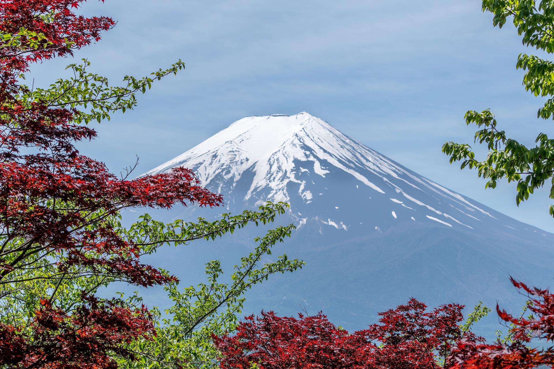ทัวร์ญี่ปุ่น โตเกียว ฟูจิ 5วัน3คืน By XJ