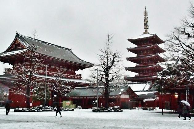 ทัวร์ญี่ปุ่น โตเกียว TOKYO สกีหน้าหนาว Free day 5วัน3คืน