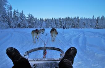 ทัวร์ฟินแลนด์ Finland Adventure (Icebreaker) 8วัน6คืน By AY