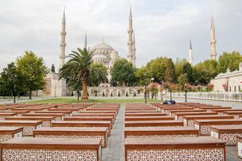 ทัวร์ตุรกี Blooming Flora in Turkey