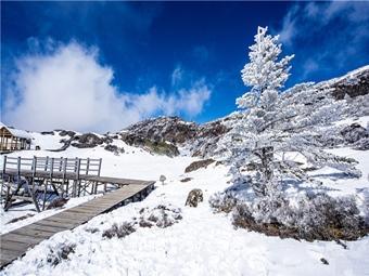 ทัวร์จีน คุนหมิง ภูเขาหิมะเจียวจื่อ สวนผลไม้