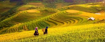 ทัวร์เวียดนามเหนือ ฮานอย ซาปา BEAUTY HANOI SAPA