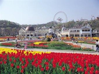 ทัวร์เกาหลี Chill Chill 5 วัน 3 คืน