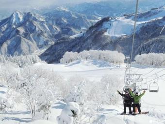 ทัวร์ญี่ปุ่น โตเกียว Winter Snow Tokyo Fuji Ski  5D3N