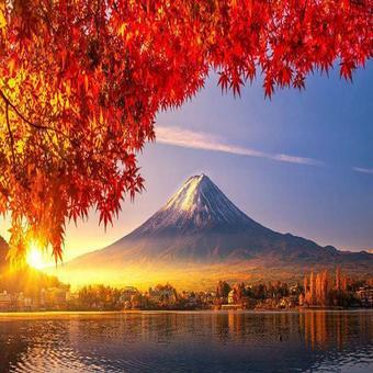 ทัวร์ญี่ปุ่น นาโกย่า มัตซึโมโต้ ฟูจิ ซุปตาร์ลิงทั้งเจ็ด 5 วัน