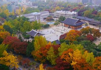 ทัวร์เกาหลี ยงอิน โซล เลสโกว้าวใบไม้เปลี่ยนสี 5 วัน 3 คืน