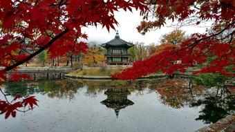 ทัวร์เกาหลี ชุนชอน โซล เลสโก หวานใจใบไม้แดง 6 วัน 3 คืน