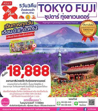 ญี่ปุ่น TOKYO FUJI ซุปตาร์ ทุ่งลาเวนเดอร์ 5วัน 3คืน
