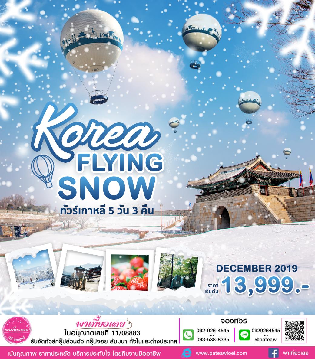 เกาหลี KOREA FLYING SNOW 5วัน 3คืน