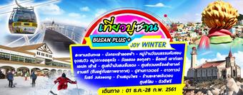 BUSAN PLUS + JOY WINTER 4D2N