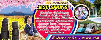 HOT PROMOTION JEJU SPRING 4D2N