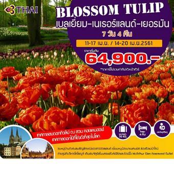 BLOSSOM TULIP 7D 4N